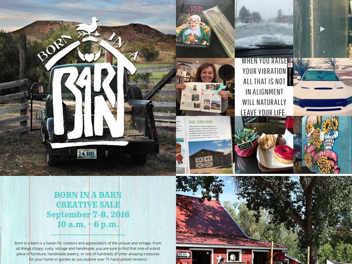 Born in a Barn Website